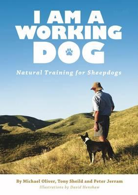 i-am-a-working-dog-natural-training-for-sheepdogs